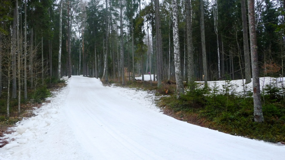 latvia-race-course